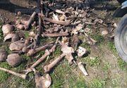 Oseminte umane, găsite într-un sat din Iaşi. Cui aparţin