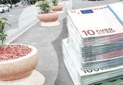 VIDEO | Jardiniere de 1.000 de euro bucata în orașul invadat de șobolani și țânțari