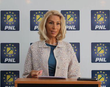 Turcan: Teodorovici ar trebui să elimine imediat toate taxele aberante introduse prin...
