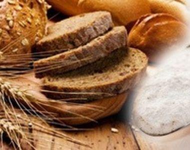 VIDEO | Cum recunoaștem pâinea plină de aditivi