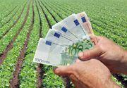 Fermierii mici pot obţine finanţări nerambursabile de 15.000 de euro prin PNDR 2020