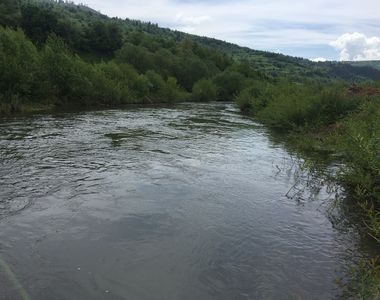 Tragedie la Sibiu: O fetiţă de 10 ani a murit după ce a căzut în râul Târnava