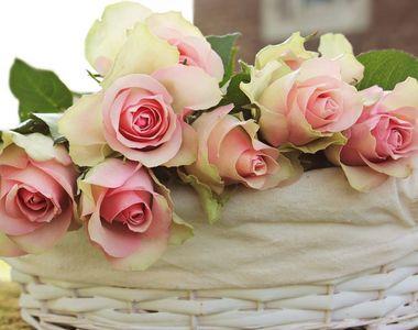5 cosuri cu flori pentru orice ocazie