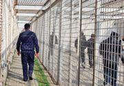 Aproape 19.000 de infractori au fost eliberaţi în baza Legii recursului compensatoriu