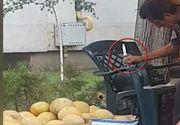 Un vânzător de pepeni, filmat în timp ce-i injecta cu seringa