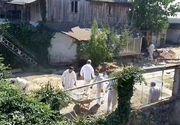 VIDEO   Noi imagini din curtea lui Gheorghe Dincă. Ce caută anchetatorii