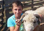Petronel, un băiatul de 16 ani din Timiș, dispărut fără urmă de o săptămână! Familia oferă recompensă 100 de oi