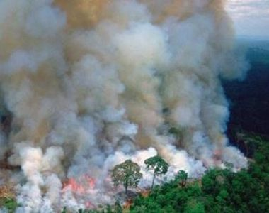 VIDEO | Arde Pământul! Liderii lumii sunt îngrijorați