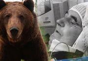 VIDEO   Doi bărbați din Argeș au fost atacați de o ursoaică. S-au luptat corp la corp cu animalul