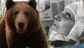 VIDEO | Doi bărbați din Argeș au fost atacați de o ursoaică. S-au luptat corp la corp cu animalul