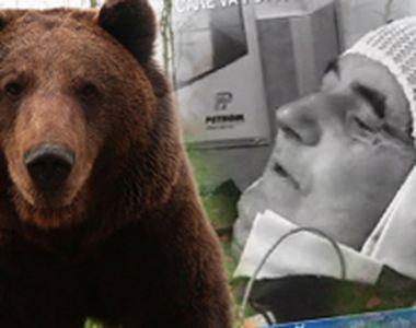 VIDEO | Doi bărbați din Argeș au fost atacați de o ursoaică. S-au luptat corp la corp...