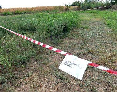 Româncă de doar 20 de ani, găsită moartă pe un câmp din Italia