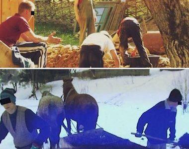 VIDEO | Mărturiile tulburătoare ale copiilor-sclavi din Maramureș. Unii au fost forțați...