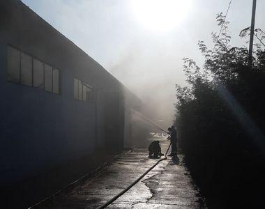 Incendiu la un depozit de materiale industriale din comuna Butimanu, în care ar putea...