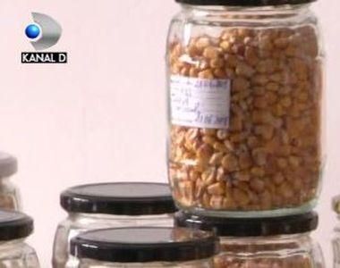 VIDEO | Banca de semințe tradiționale românești. Unde se află și ce trebuie să știe cei...
