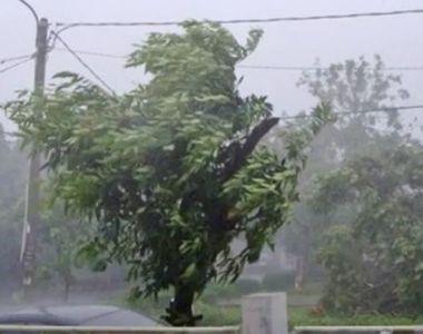MAE atenționează călătorii - Cod roșu de vânt şi precipitaţii