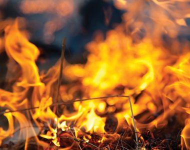 VIDEO   Tragedie în Neamţ: O femeie şi doi copii au murit într-un incendiu