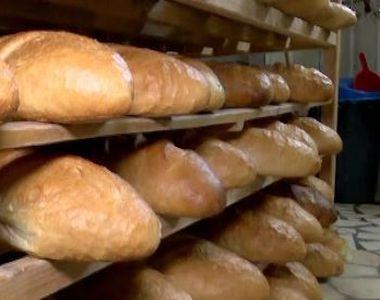 VIDEO | Pâinea se scumpește din cauza secetei. Când se majorează prețurile