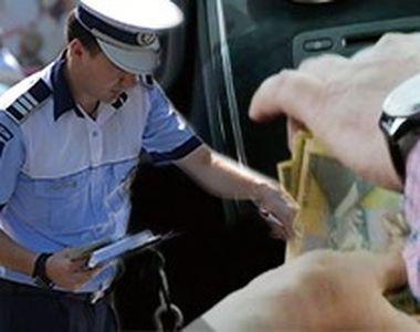 VIDEO | Mafia permiselor pentru analfabeți. Mii de șoferi sunt, acum, un adevărat...