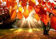 Prognoza meteo pentru marți, 1 octombrie. Vreme deosebit de caldă