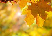 Prognoza meteo 9 octombrie! Meteorologii vin cu vești bune