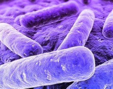 Boala cu transmitere sexuală care nu era cunoscută până acum! Face tot mai multe victime
