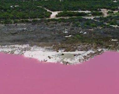 VIDEO | Fascinantul lac roz îi uimește pe turiști. Explicația pentru culoarea inedită