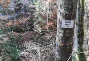 Turist găsit mort, în munții Bihorului. Bărbatul era căutat de 3 zile