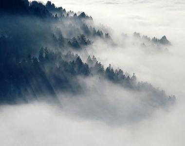 Cod galben de ceaţă în 11 judeţe, până la miezul nopţii; în unele zone va fi burniţă