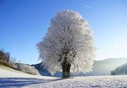 Prognoza meteo: Ne așteaptă o iarnă grea!