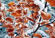 Vine iarna! Meteorologii anunţă răcirea accentuată a vremii în următoarele zile
