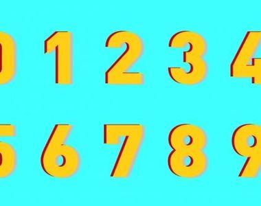 Rezultate Loto 6/49: Numere Loto, Joker, Noroc Plus, Noroc și Super Noroc din 31...