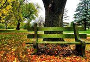 Meteo 20 noiembrie: Vom avea parte de cer senin