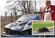 El este bărbatul care a lovit cu mașina usul din Harghita. Ce s-a întâmplat cu el după incidentul care a scandalizat toată România