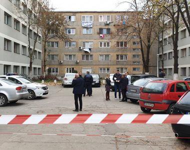 S-a cerut ajutorul armatei în cazul deratizării din Timișoara