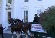 VIDEO   Cum arată, anul acesta, bradul de Crăciun de la Casa Albă