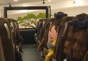VIDEO | Safari virtual, la Grădina Zoologică din Brașov