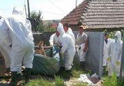 Stare de alertă în România după descoperirea unui focar periculos. Epidemia lovește toată țara