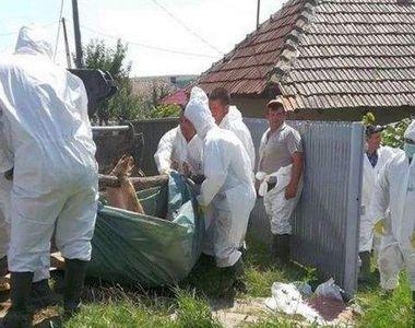 Stare de alertă în România după descoperirea unui focar periculos. Epidemia lovește...