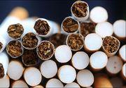Constanţa: 14 persoane au fost reţinute pentru contrabandă cu ţigări. Poliţiştii au făcut 65 de percheziţii în acest caz