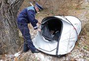 """Femeia care a ales să locuiască într-un cort de la marginea pădurii din Șcheii Brașovului: """"Preferă să doarmă în natură"""""""