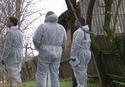 VIDEO   Dubla crimă din Satu Mare. Femeile, ucise pentru 4.000 de euro. Criminalii sunt în libertate