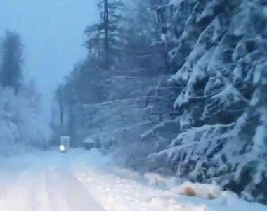 VIDEO | România, sub cod galben de viscol. La munte e iarnă în toată regula