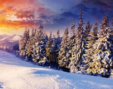 Cea mai călduroasă iarnă din ultimul secol. Ce spun meteorologii