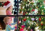VIDEO | Semnificația bradului de Crăciun