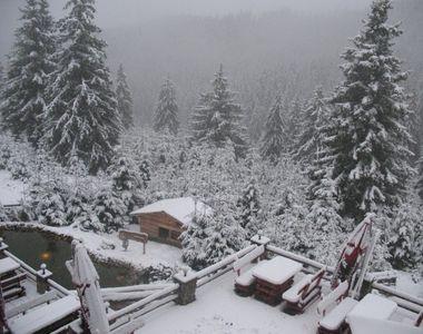 Avertizare de vreme rea: ninsori și vânt puternic până marți în mai multe zone din țară