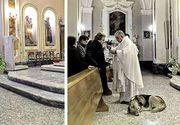 Un patruped a impresionat o lume întreagă după ce a fost văzut mergând zilnic la biserica unde a fost înmormântarea stăpânei