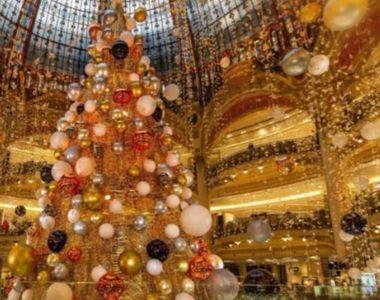 VIDEO | Brazi de Crăciun de milioane de dolari. Unde pot fi văzuți