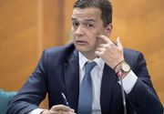Sorin Grindeanu, după ce a participat la şedinţa PSD Timiş: Nu spun nici da, nici nu unei posibile reîntoarceri în politică