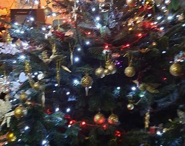 Primul Crăciun fără Răzvan Ciobanu! Părinții designerului au făcut bradul la pensiunea...